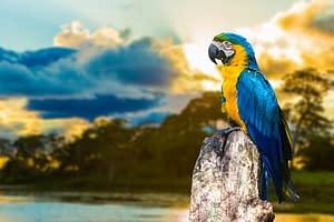 Flora und Fauna auf Südamerika Reisen