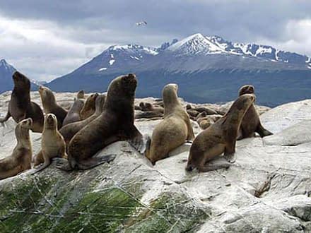 Traumhaftes Patagonien 4