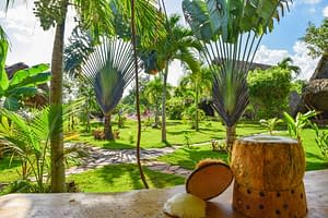 Karibik Hotels kokos chalet tropical