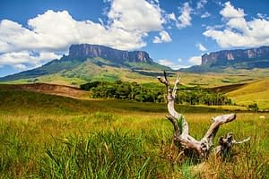 Südamerika Reise - Gran Sabana in Venezuela