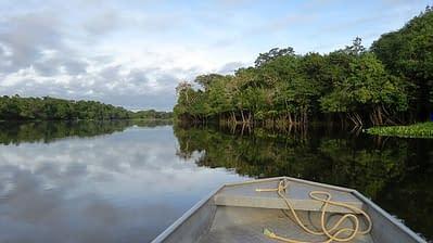 Amazonasgebiet Ecuador
