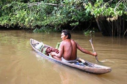 Südamerika Orinoco Delta Reisen