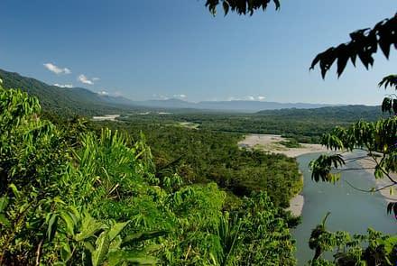 Nationalpark Manu in Südamerika