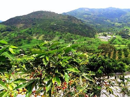 Südamerika Kolumbien Reisen