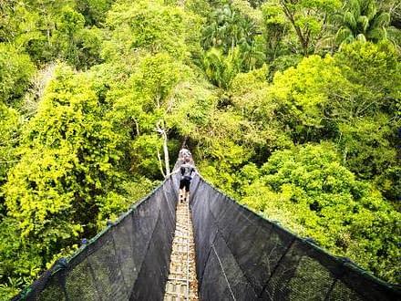 Canopy Taricaya peru