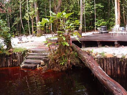 Vielfältiges Suriname 1