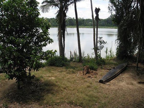 3 Tage Madidi Nationalpark 7